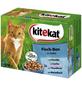 Katzen-Nassfutter, Fisch, 1200 g-Thumbnail