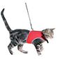TRIXIE Katzengeschirr »XCat«, Bauchumfang: 24 – 4 rot-Thumbnail