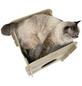 Katzenmöbel »Cottage«, eichefarben-Thumbnail