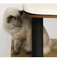 Katzenmöbel »V-High Base«, schwarz-Thumbnail