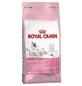 ROYAL CANIN Katzentrockenfutter, 2 kg-Thumbnail