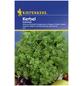 KIEPENKERL Kerbel cerefolium Anthriscus-Thumbnail