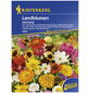 KIEPENKERL Kiepenkerl Blumenmischung Blütenteppich-Thumbnail