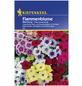KIEPENKERL Kiepenkerl Blumenmix-Thumbnail