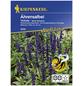 KIEPENKERL Kiepenkerl Saatgut, Ährensalbei, Salvia Farinacea Ährensalbei, Einjährig-Thumbnail