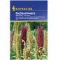 KIEPENKERL Kiepenkerl Saatgut, Fuchsschwanz, Amaranthus Fuchsschwanz, Einjährig-Thumbnail