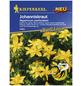 KIEPENKERL Kiepenkerl Saatgut, Johanniskraut, Johanniskraut, Zweijährig-Thumbnail