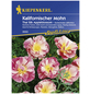 KIEPENKERL Kiepenkerl Saatgut, Kalifornischer Mohn, Eschscholzia californica Appleblossom, Einjährig-Thumbnail