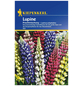 KIEPENKERL Kiepenkerl Saatgut, Lupine, Lupinus Polyphyllus Mix, Mehrjährig-Thumbnail