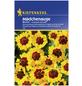 KIEPENKERL Kiepenkerl Saatgut, Mädchenauge, Coreopsis tinctoria Bicolor Mädchenauge, Einjährig-Thumbnail