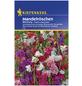 KIEPENKERL Kiepenkerl Saatgut, Mandelröschen, Clarkia Unguiculata, Einjährig-Thumbnail