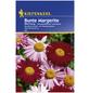 KIEPENKERL Kiepenkerl Saatgut, Margerite, Chrysanthemum Margerite, Mehrjährig-Thumbnail