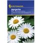 KIEPENKERL Kiepenkerl Saatgut, Margerite, Chrysanthemum, Mehrjährig-Thumbnail