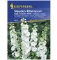 KIEPENKERL Kiepenkerl Saatgut, Rittersporn, Delphinium Magic Fountains White, Mehrjährig-Thumbnail