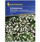 KIEPENKERL Kiepenkerl Saatgut, Schleierkraut, Gypsophila paniculata Schleierkraut, Mehrjährig-Thumbnail
