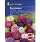 KIEPENKERL Kiepenkerl Saatgut, Sommeraster, Callistephus Chinensis Standy Mix, Einjährig-Thumbnail