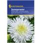 KIEPENKERL Kiepenkerl Saatgut, Sommeraster, Callistephus Prinzess Aster, Einjährig-Thumbnail