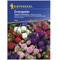 KIEPENKERL Kiepenkerl Saatgut, Sommeraster, Callistephus Zwergaster Teppich, Einjährig-Thumbnail