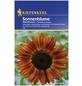 KIEPENKERL Kiepenkerl Saatgut, Sonnenblume, Helianthus annuus Abendsonne, Einjährig-Thumbnail