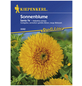 KIEPENKERL Kiepenkerl Saatgut, Sonnenblume, Helianthus annuus Santa Fe, Einjährig-Thumbnail