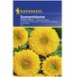 KIEPENKERL Kiepenkerl Saatgut, Sonnenblume, Helianthus Sonnenblume, Einjährig-Thumbnail