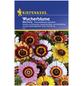 KIEPENKERL Kiepenkerl Saatgut, Wucherblume, Chrysanthemum Carinatum, Einjährig-Thumbnail