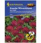 KIEPENKERL Knautie / Witwenblume, Knautia macedonica, Samen, Blüte: rot-Thumbnail