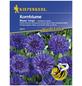 KIEPENKERL Kornblume, Centaurea cyanus, Samen, Blüte: blau-Thumbnail