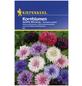 KIEPENKERL Kornblume, Centaurea cyanus, Samen, Blüte: mehrfarbig-Thumbnail