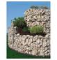 BELLISSA Kräuterspirale, BxHxL: 150 x 80 x 200 cm, Stahl-Thumbnail