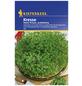 KIEPENKERL Kresse sativum Lepidium-Thumbnail