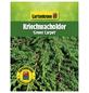 GARTENKRONE Kriechwacholder, Juniperus communis »Green Carpet«, winterhart-Thumbnail