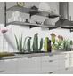 mySPOTTI Küchenrückwand-Panel, fixy, Kaktur Watercolor, 280x60 cm-Thumbnail