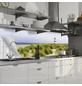 mySPOTTI Küchenrückwand-Panel, fixy, Strand, 220x60-Thumbnail