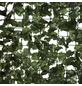 MR. GARDENER Kunsthecke, Polyester, LxH: 300 x 150 cm-Thumbnail