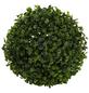 Flower-Power Kunstpflanze, grün, kugelförmig-Thumbnail