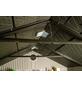 LIFETIME Kunststoffhaus, B x T x H: 452 x 239 x 244 cm-Thumbnail
