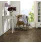 RENOVO Laminat, 10 Stk./2,66 m², 7 mm,  Kiefer Bordeaux-Thumbnail