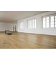 KAINDL Laminat, 11 Stk./2,42 m², 8,5 mm,  Dek EI0AB0-Thumbnail
