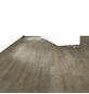 RENOVO Laminat, B x L: 193 x 1380 mm, kiefer_niderau-Thumbnail