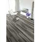 KAINDL Laminat »Masterfloor«, BxL: 193 x 1383 mm, Stärke: 8 mm, Kiefer Piccadilly-Thumbnail