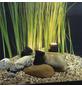 HEISSNER Lampe 1,5 w-Thumbnail