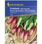 KIEPENKERL Lauchzwiebel cepa Allium-Thumbnail