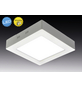 NÄVE LED-Aufbaupanel »Dimplex«, dimmbar, inkl. Leuchtmittel in warmweiß-Thumbnail
