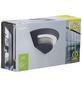 LUTEC LED-Außenwandleuchte »GHOST«, 7 W, IP54, neutralweiß-Thumbnail