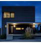 STEINEL LED-Außenwandleuchte »L 244 LED«, 7,5 W, inkl. Bewegungsmelder, IP44, warmweiß-Thumbnail