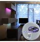 GLOBO LIGHTING LED-Band, Länge: 500 cm, 475 lm-Thumbnail