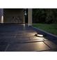 PAULMANN LED-Bodenaufbauleuchte »Plug & Shine«, 6 W, dimmbar, IP67, warmweiß-Thumbnail