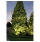 PAULMANN LED-Bodeneinbauleuchte »Plug&Shine«, 6 W, dimmbar, IP67, warmweiß-Thumbnail
