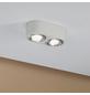 PAULMANN LED-Deckenleuchte aluminiumfarben 2-flammig, dimmbar, inkl. Leuchtmittel-Thumbnail
